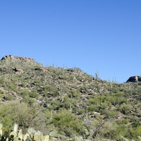 Hiking the Tortolita Mountains