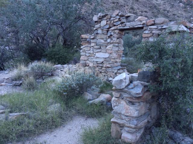 Wild Burro Trail