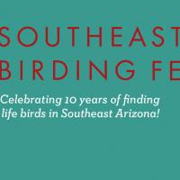 Murmurate with the the Southeast Arizona Birding Festival