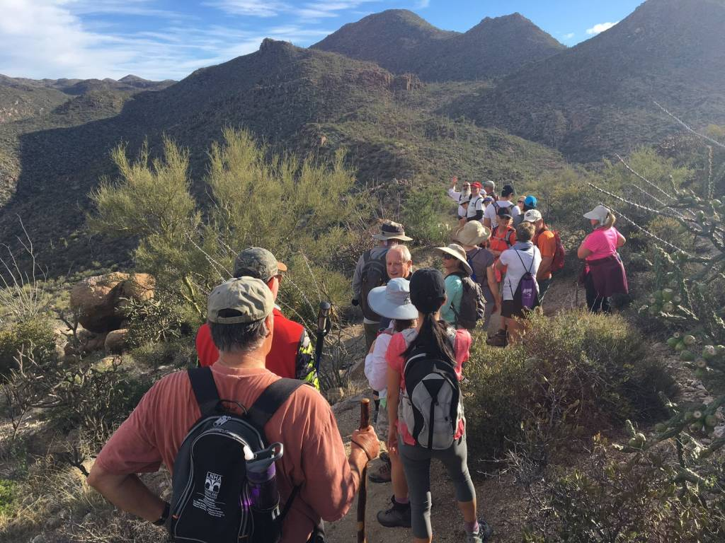 Guided Hike of the Tortolitas