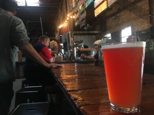 Wild desert ingredients enhance local beer
