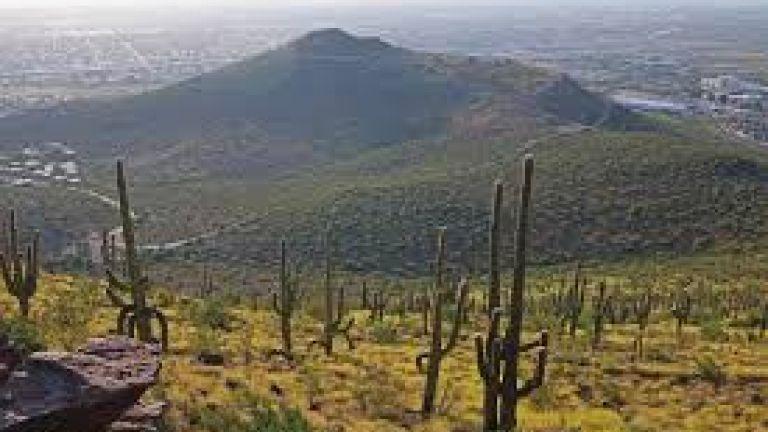 Tumamoc Hill