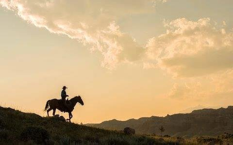 How to live the Wild West dream in Arizona's cowboy country at White Stallion Ranch