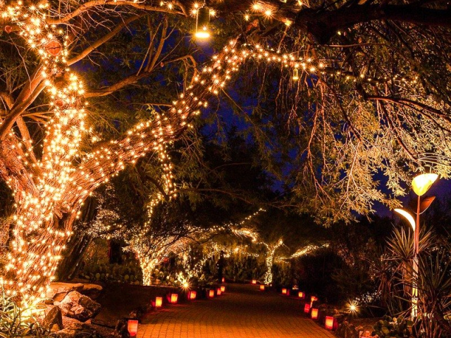 The Best Arizona Cities To Visit During The Christmas Season