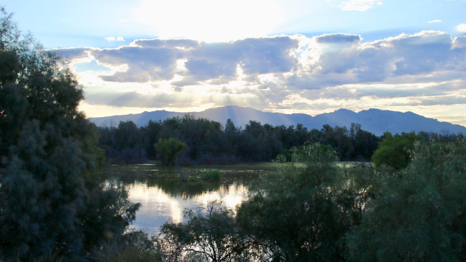 El Rio Preserve