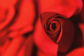 Valentine's Weekend at the Ritz-Carlton, Dove Mountain
