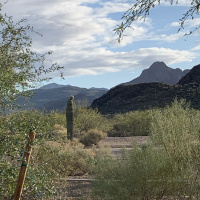 What is open in Marana? Where can I find essential travel services in Marana?