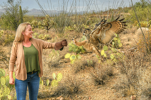 Arizona-Sonora Desert Museum Launches Popular New Avian Adventures