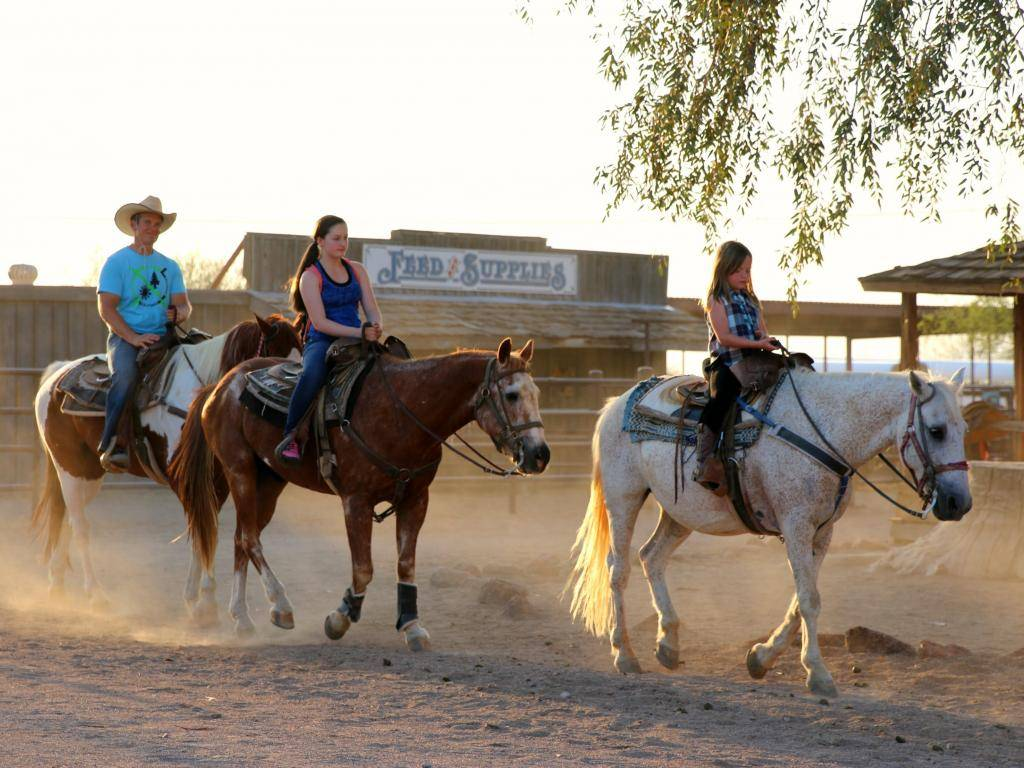 Marana Parks & Recreation Buckaroo Horse Camp (with Social Distancing)