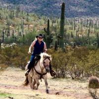 horseback riding in the desert among saguaros