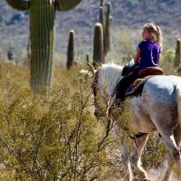 Girl horseback riding in the desert among saguaros